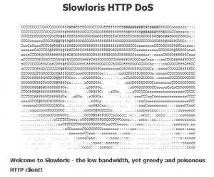 Slowloris HTTP DoS Logo